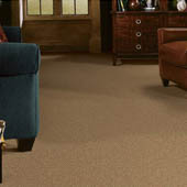 commercial-carpet-galleries